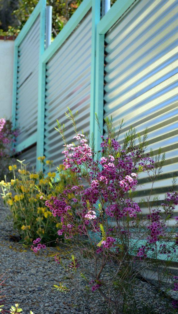 horizontal corrugated metal fence with pastel turquoise trim