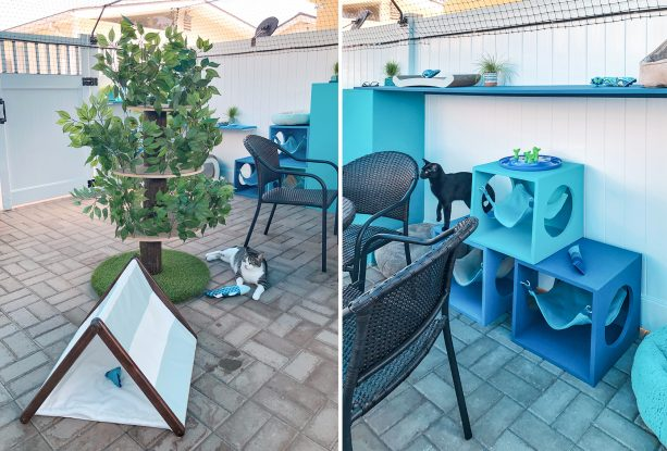 complete features for the cats, including artificial tree, hammocks, and tents