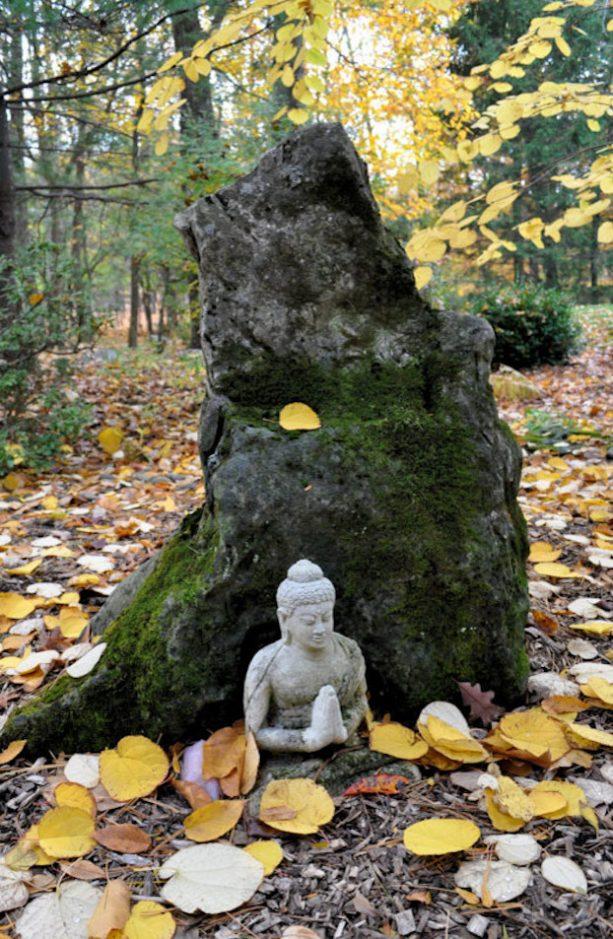 black lava zen rock in a Japanese-style garden