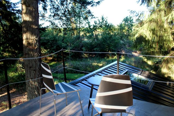 the tiny roof deck with simple rope railing